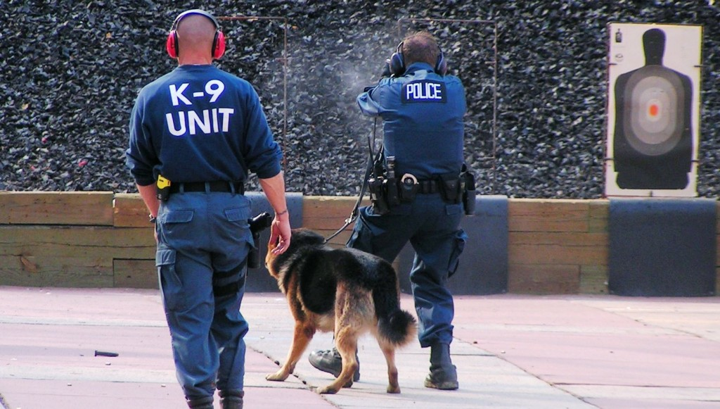 police k9 trainer certification