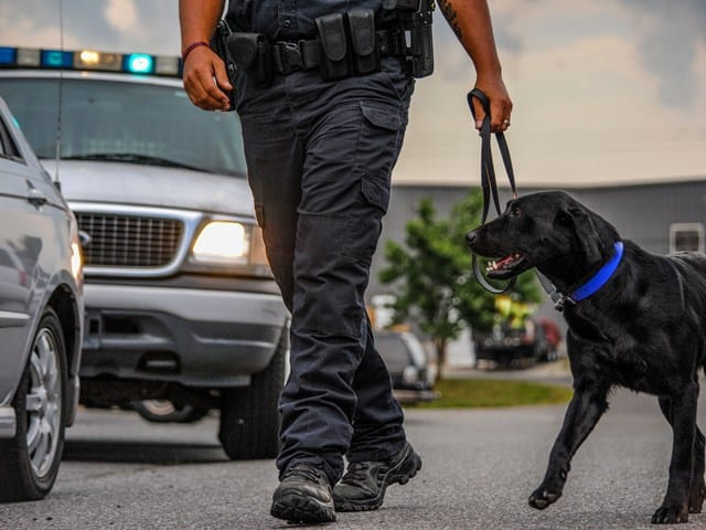 police k9 handler course