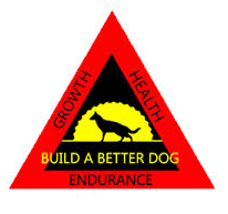 build a better dog copy