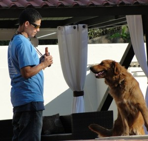 Dog Training Puerto Rico - John Lugo