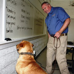 Andy Anderson, Detection Dog Trainer