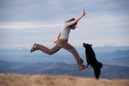 At highland canine training llc we have rewarding dog training job
