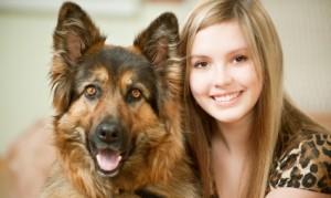 protectiion dog for family