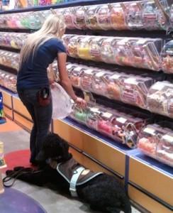 service dog shopping