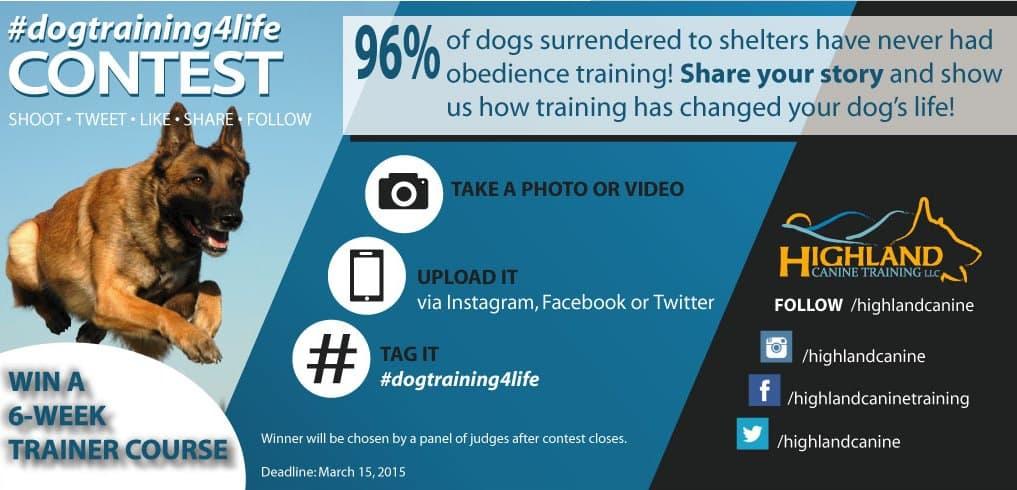 Dog Training 4 Life Contest