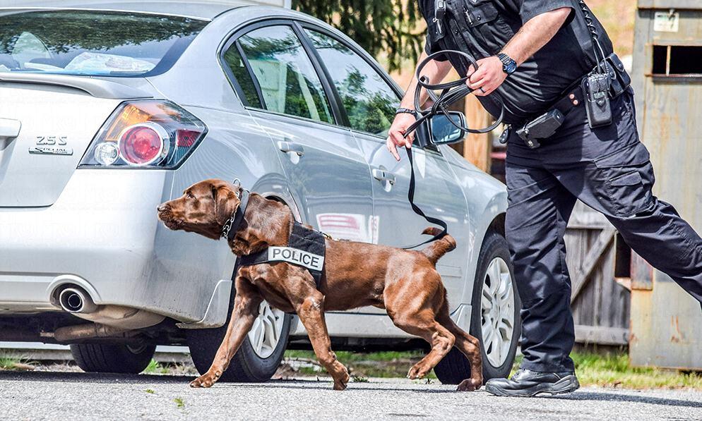 police dog training alabama