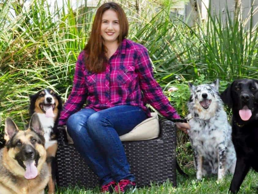 tampa florida dog trainer brittany horbert