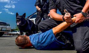 police-k9-training