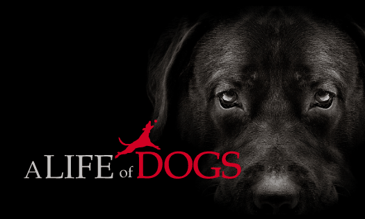 A Life of Dogs Podcast