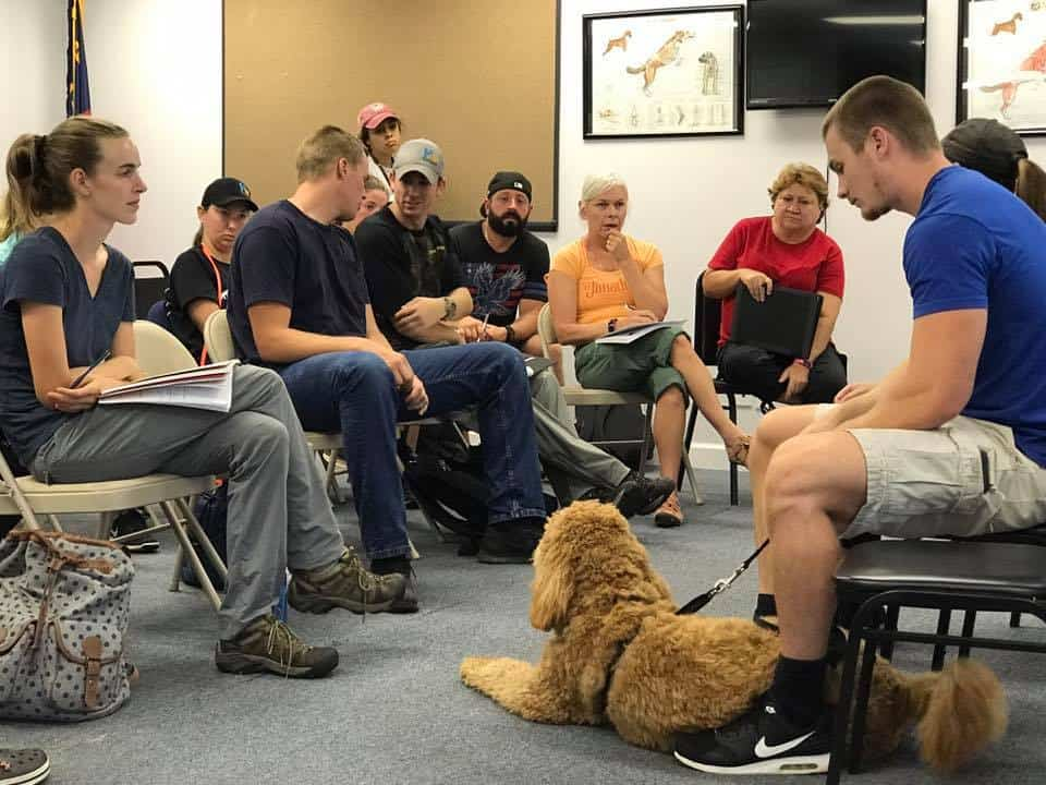 free dog behavior clinic school for dog trainers