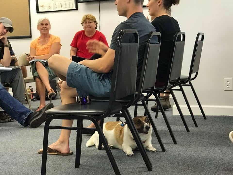 dog trainer school students behavior