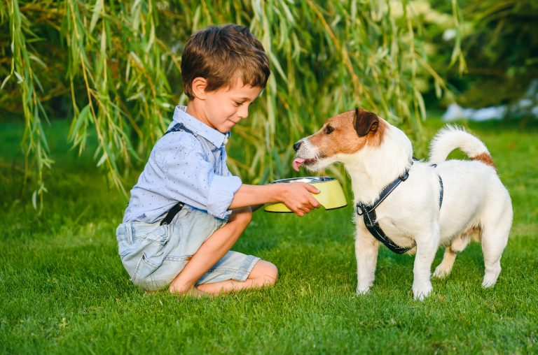 child giving dog water