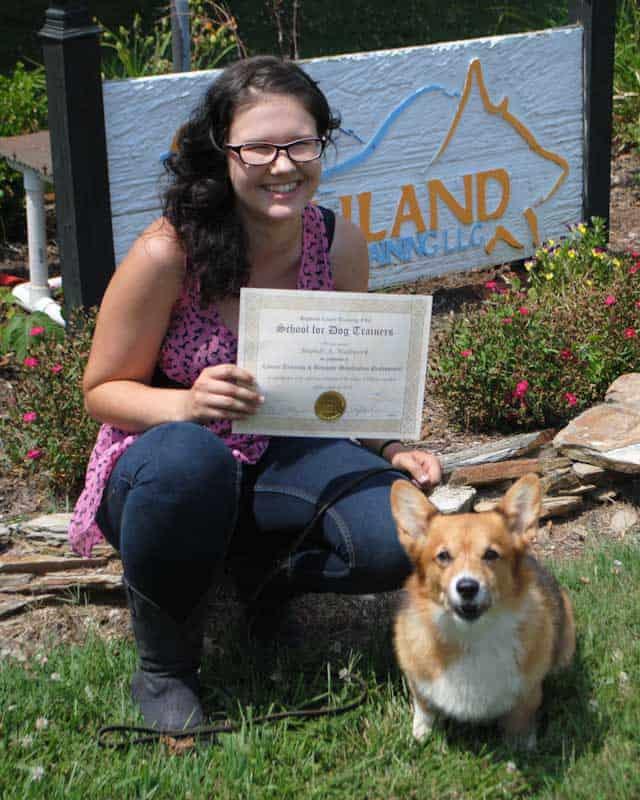 bradni wallwork graduation school for dog trainers