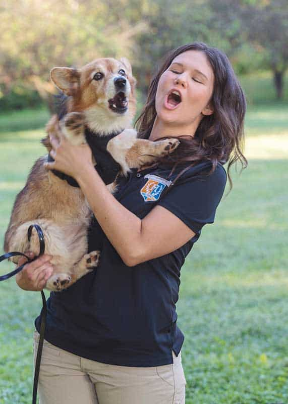 brandi wallwork highland canine training
