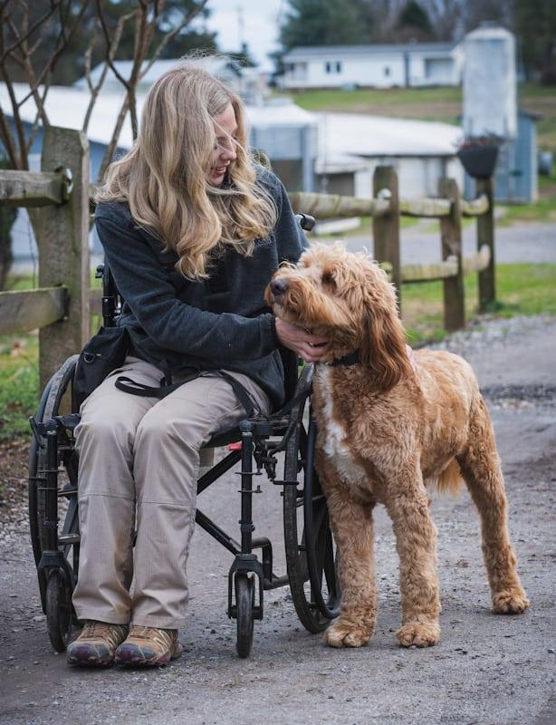 abby trogdon service dog trainer