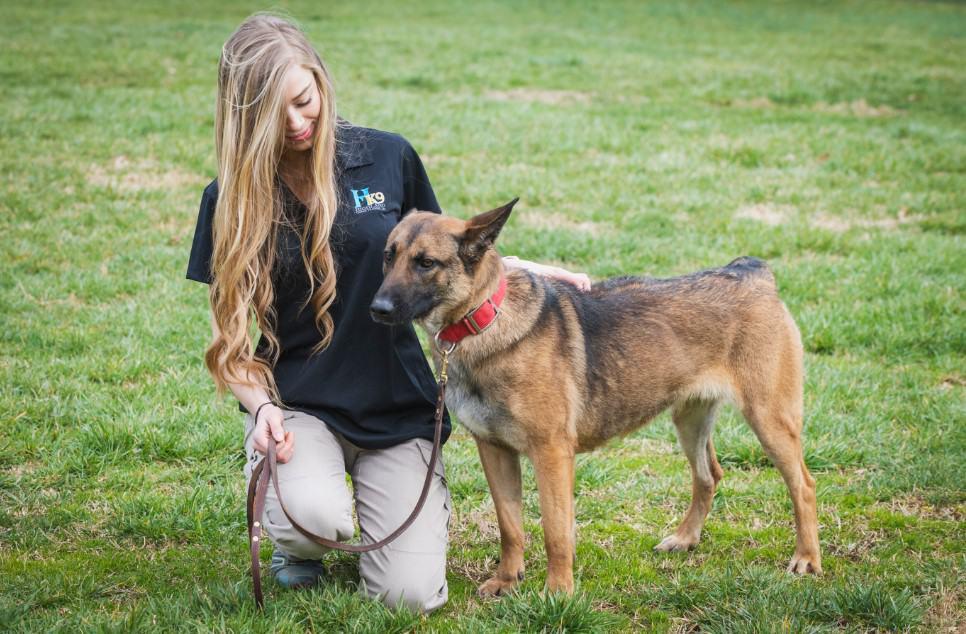 sierra fruth chattanooga tn dog trainer
