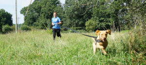 erin purgason highland canine