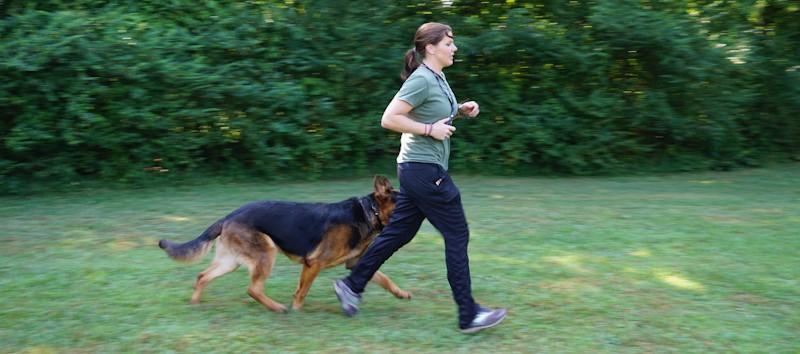 erin purgason owner highland canine
