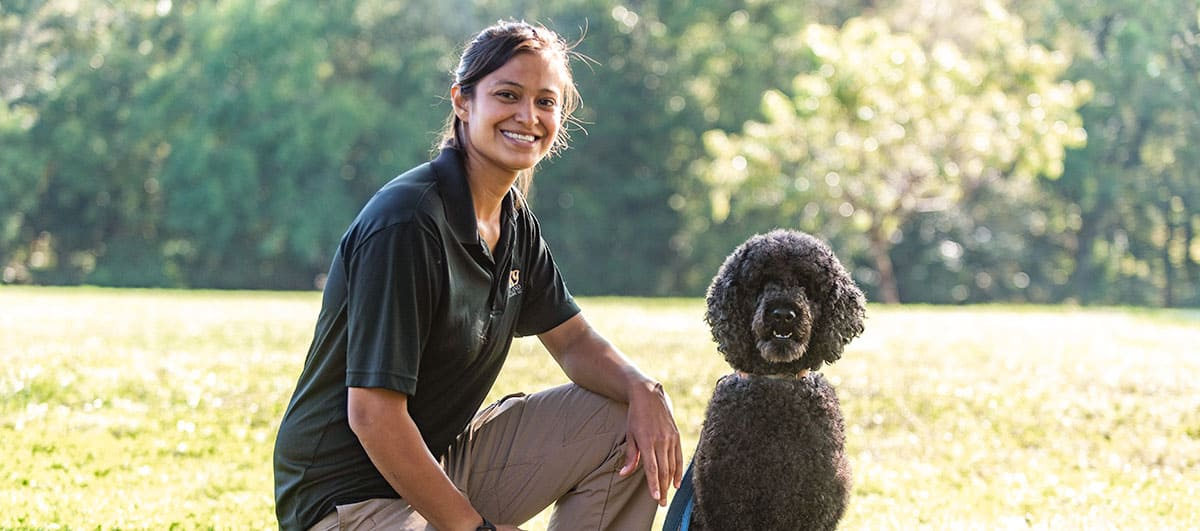 dog training tucson arizona