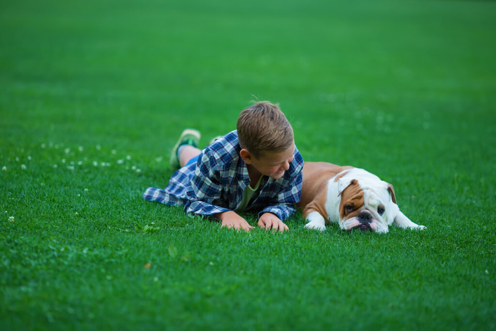 child laying down with bulldog in grass