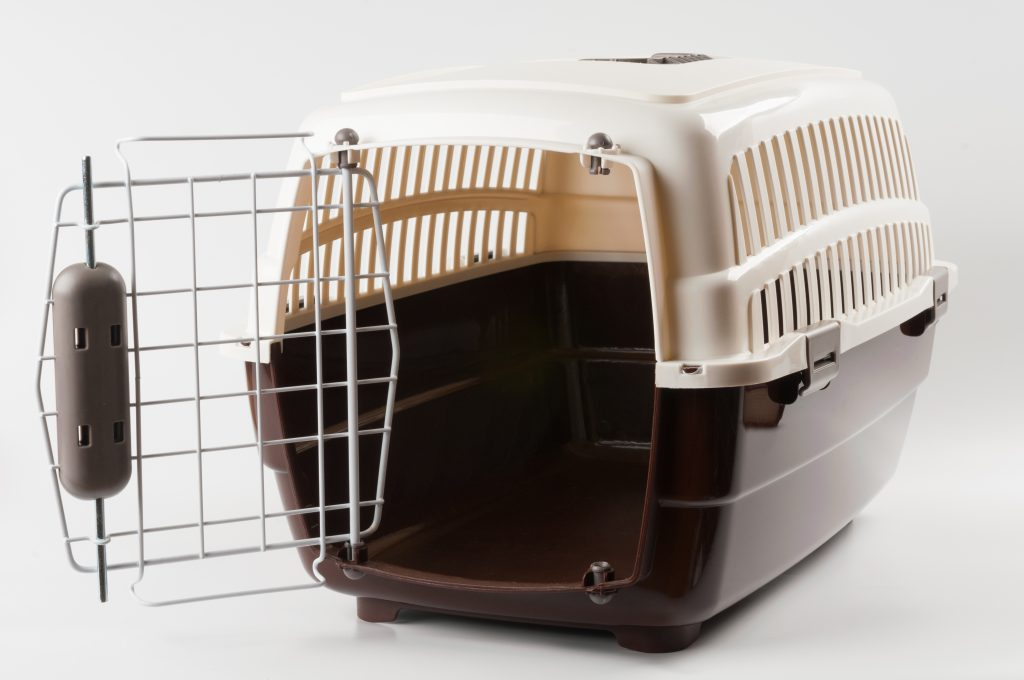 dog crate opened