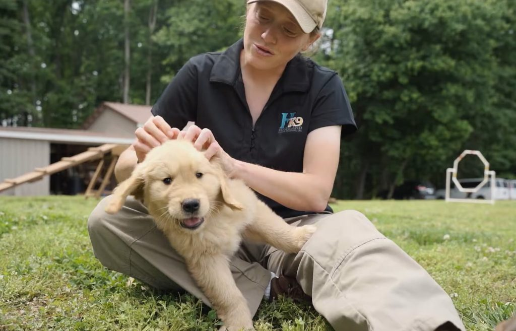 belinda tsokanas scranton pa dog trainer with puppy